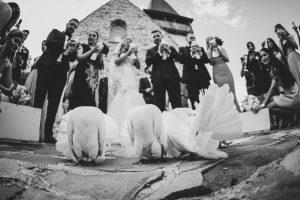 Porumbei eliberați în fața capelei de la Sun Garden din Cluj-Napoca