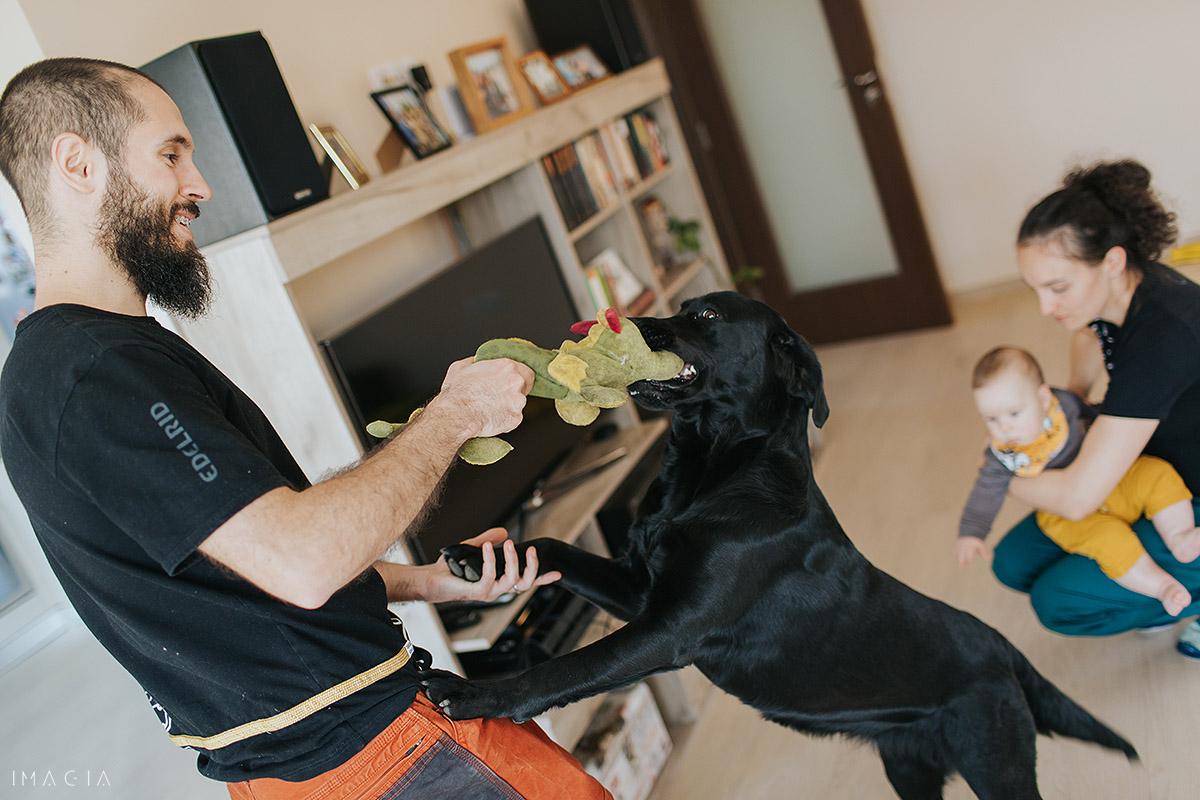 Joaca cu câinele în casă