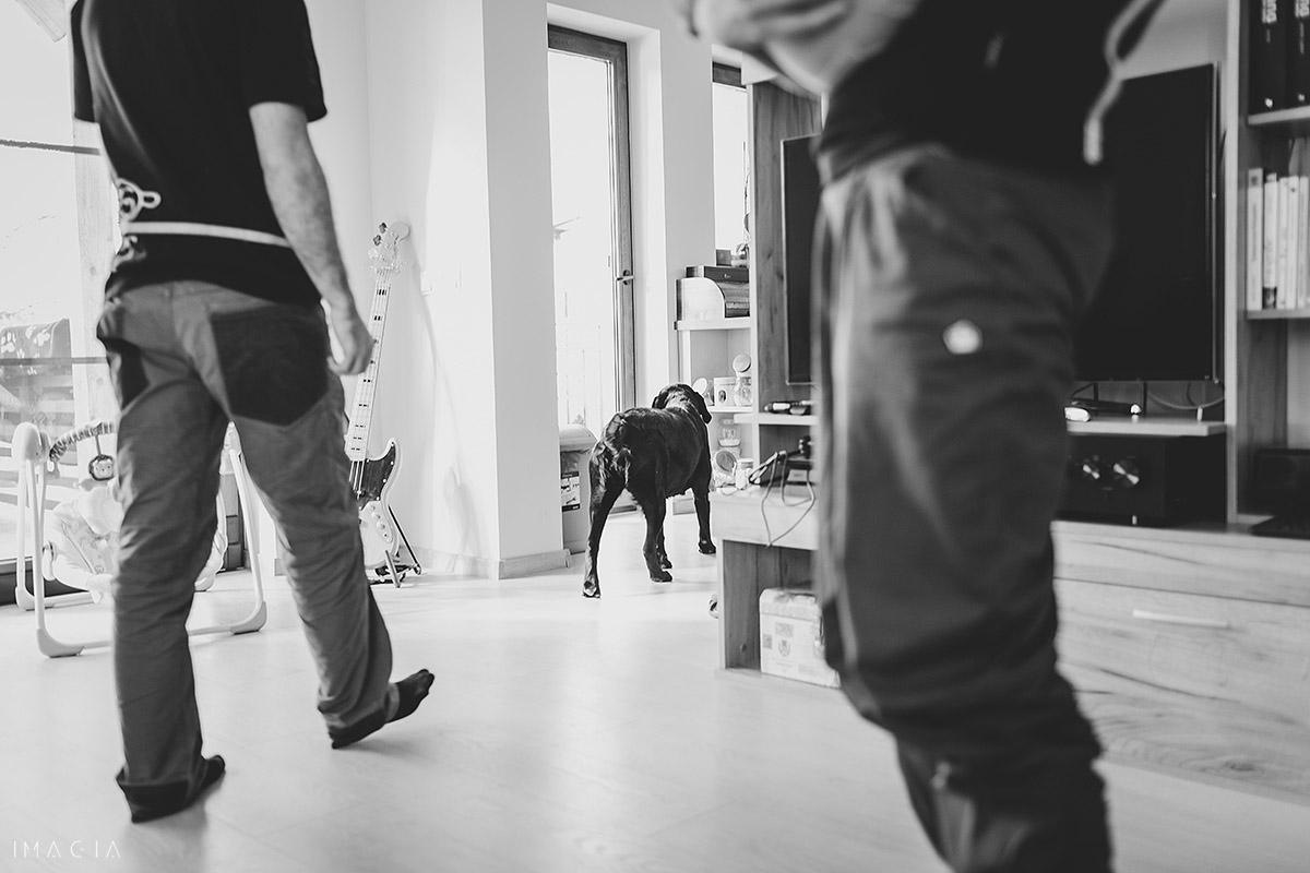 Familie cu câine din Cluj-Napoca